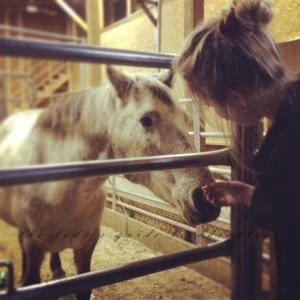 {horse love}