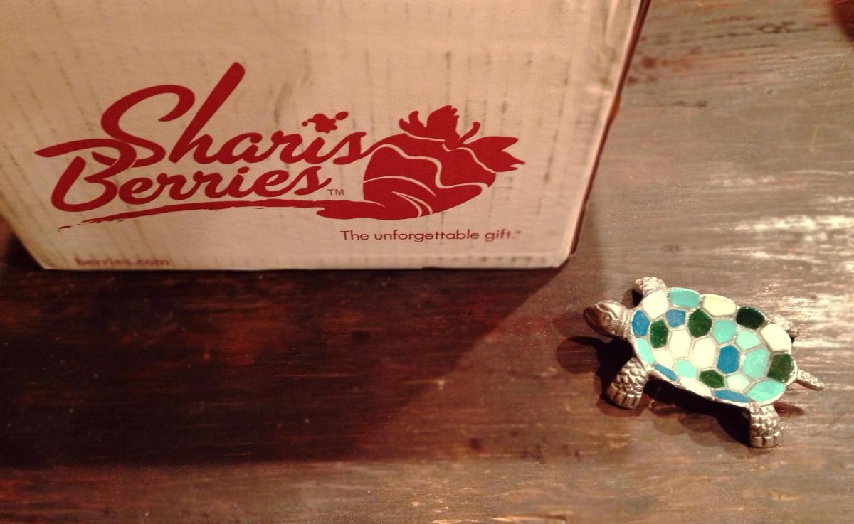 pretty turtle change dish, shari's berries, facebook gift