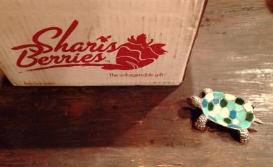 pretty turtle change dish, shari's berries, facebook gift