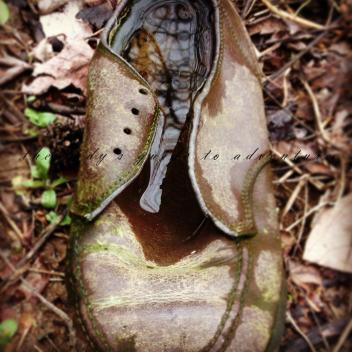 the lost lake in a dirty shoe