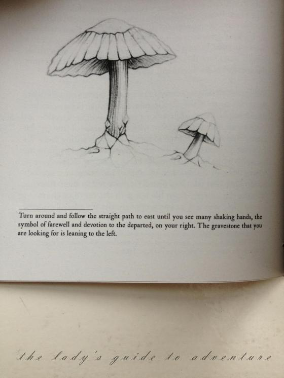 mushroom picture in homemade book, clue at the bottom, couchsurfing event