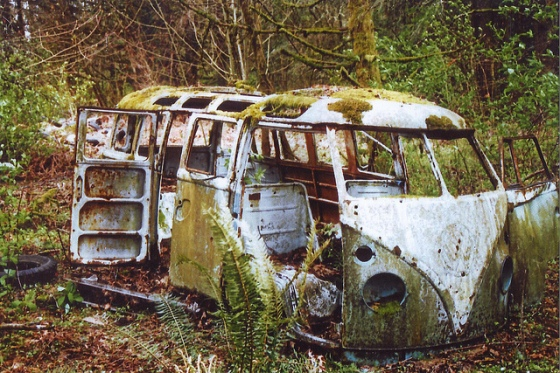 volkswagen sunk into ground, oversome by plants, mother nature is a beast