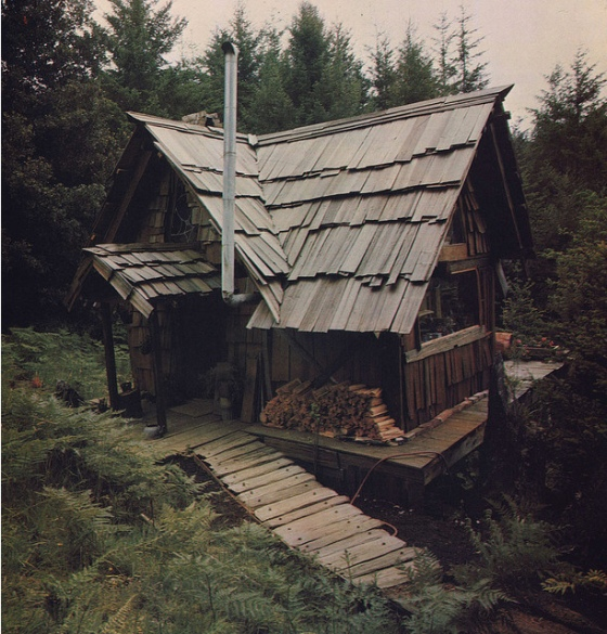 homemade house, this cabin, cooky little cabin, beautiful little house in the woods