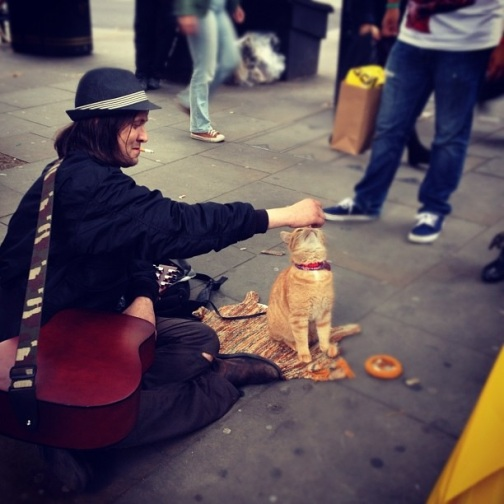 street performer, domestic cat, trained cat to give high fives, street performer in london, traveling europe, guy playing guitar in a hat, so many hats, yellow cat