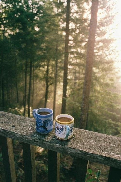 couple of mugs, coffee in the woods, simple living, rays of sunlight, his and hers coffee
